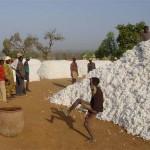 Katoen in de dorpen