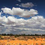 kalahari en de regen