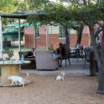 Het terras van Berry Bush met Jill en Ida