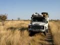 Gras Botswana