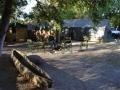 Camp krokodillenvangers