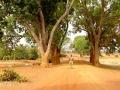 Sahel 1