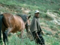 Lesotho man en paard