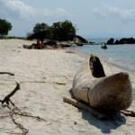 Malawi Foto dugout