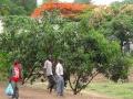 Malawi Foto STRAAT