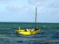 Mozambique visser