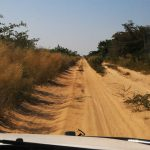 Centrale Kalahari