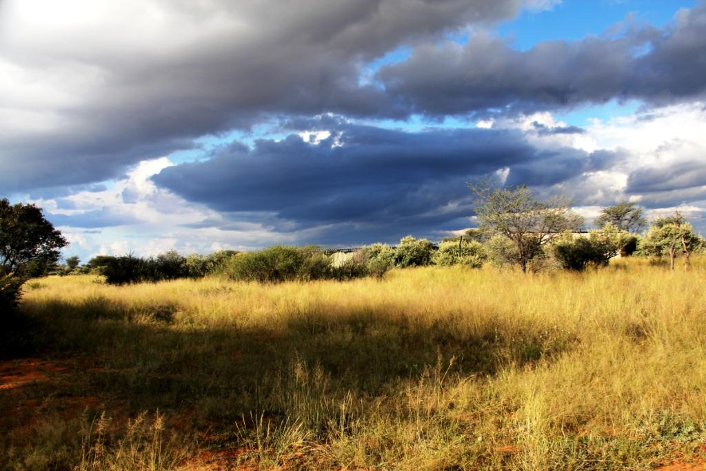 Regenbui in Namibie