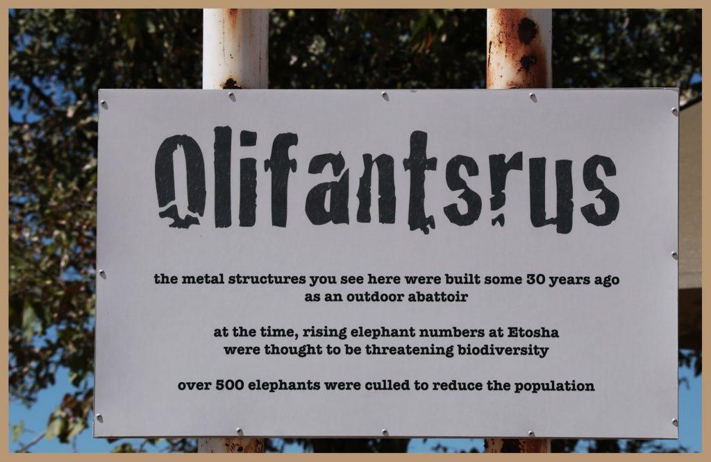Olifantsrus - Bord