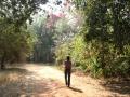 De toegangsweg naar The Moorings
