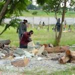 Zimbabwe beeldhouwers