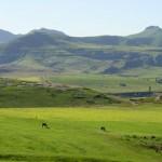Foto Zuid Afrika Kwazulu Natal